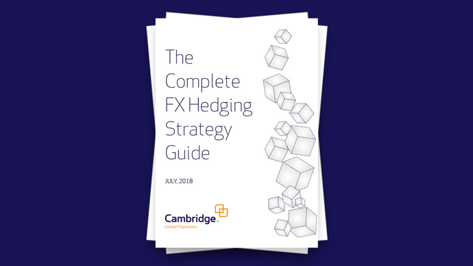 White Paper: The Complete FX Hedging Strategy Guide